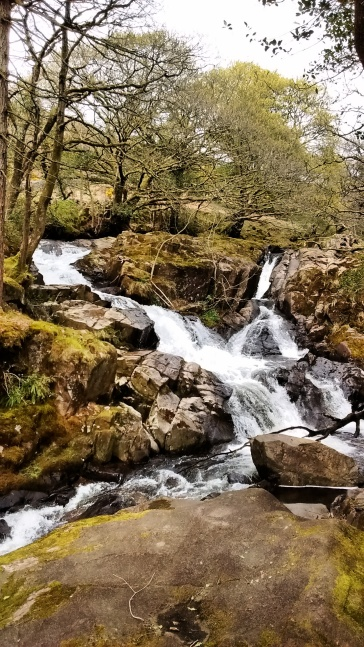 15 Burnmoor Tarn walk