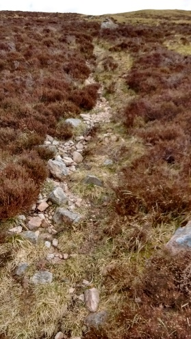 2 Path through heather