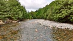 22.1 Liza downstream